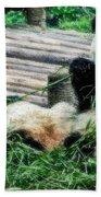 3722-panda -  Embossed Sl Bath Towel