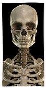 Bones Of The Head And Upper Thorax Bath Towel