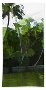 Coconut Trees And Other Plants In A Creek Bath Towel