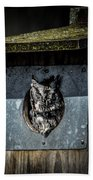 Eastern Screech Owl  Bath Towel