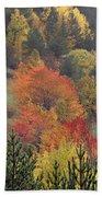 Fall Colours Bath Towel