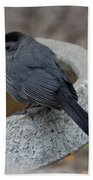 Grey Catbird Bath Towel