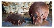 Hippopotamus In River. Serengeti. Tanzania Bath Towel
