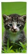 Kitty In Grass Bath Towel