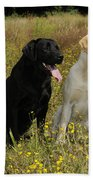 Labrador Retriever Dogs Bath Towel