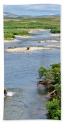 4-lay Of The Land Many Grizzly Bears In Moraine River In Katmai National Bath Towel
