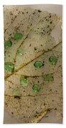 Leaf Bath Towel