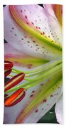 Oriental Lily Hybrid Named Mojave Bath Towel