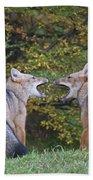 Patagonian Red Fox Bath Towel