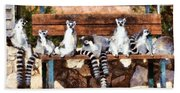 Ring Tailed Lemurs Hand Towel