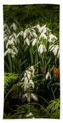 Snowdrop Woods Bath Towel