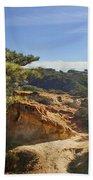 Torrey Pines State Park - California Bath Towel