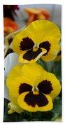 Viola Tricolor Heartsease Bath Towel