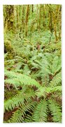Virgin Rainforest Wilderness Of Fiordland Np Nz Bath Towel