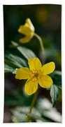 Yellow Wood Anemone Bath Towel