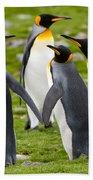 King Penguins Bath Towel