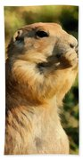 Black-tailed Prairie Dog Bath Towel