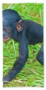 Bonobo Baby Bath Towel