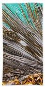 Bull Kelp Blades On Surface Background Texture Bath Towel