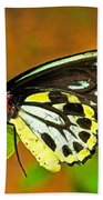 Cairns Birdwing Butterfly Bath Towel
