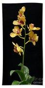 Dendrobium Orchid Bath Towel