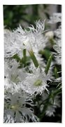 Dianthus Superbus - White Bath Towel
