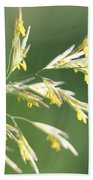 Flowering Brome Grass Bath Towel