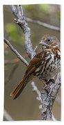 Fox Sparrow Hand Towel