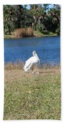 Great White Heron Bath Towel