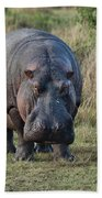 Hippopotamus Bath Towel