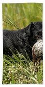 Labrador Retriever Bath Towel