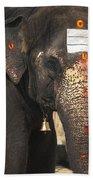 Lakshmi Temple Elephant Bath Towel