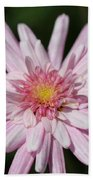 Marguerite Daisy Named Double Pink Bath Towel