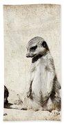 Meerkatz Hand Towel