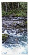 Oregon Bath Towel