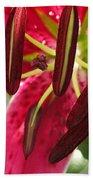 Orienpet Lily Named Scarlet Delight Bath Towel
