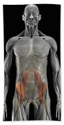 The Psoas Muscles Bath Towel