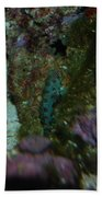 Tropical Fish And Coral Bath Towel
