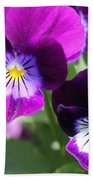 Viola Named Sorbet Plum Velvet Jump-up Bath Towel