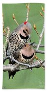 Yellow-shafted Northern Flickers Bath Towel