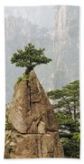 Chinese White Pine On Mt. Huangshan Bath Towel