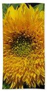 Dwarf Sunflower Named Teddy Bear Bath Towel