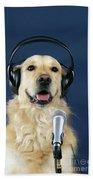 Golden Retriever Dog Bath Towel