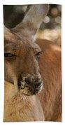 Kangaroos Bath Towel