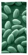 Sem Of Grass Pollen Bath Towel
