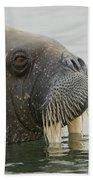 Walrus Bath Towel