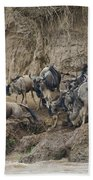Wildebeests Crossing Mara River, Kenya Bath Towel