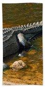 American Alligator Bath Towel
