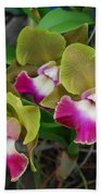 Orchid Bath Towel