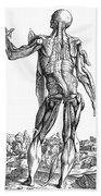 Vesalius: Muscles, 1543 Bath Towel